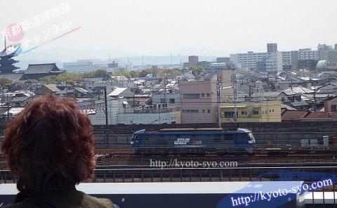 京都鉄道博物館の隣を走る貨物列車