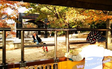 秋の梅小路公園